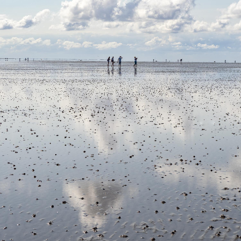 Wanderung im Wattenmeer