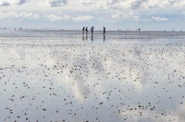 Wattenmeer – Spaziergang auf dem Meeresboden