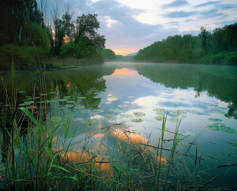 Regionaltreffen NP Donau-Auen, 30.04. – 03.05.2020