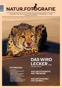 VTNÖ-Magazin