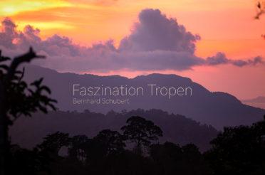 "Ausstellung ""Faszination Tropen"""