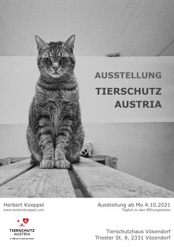"""Ausstellung """"Tierschutz Austria"""""""